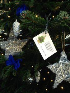Baum & Raum wünscht eine entspannte Adventszeit