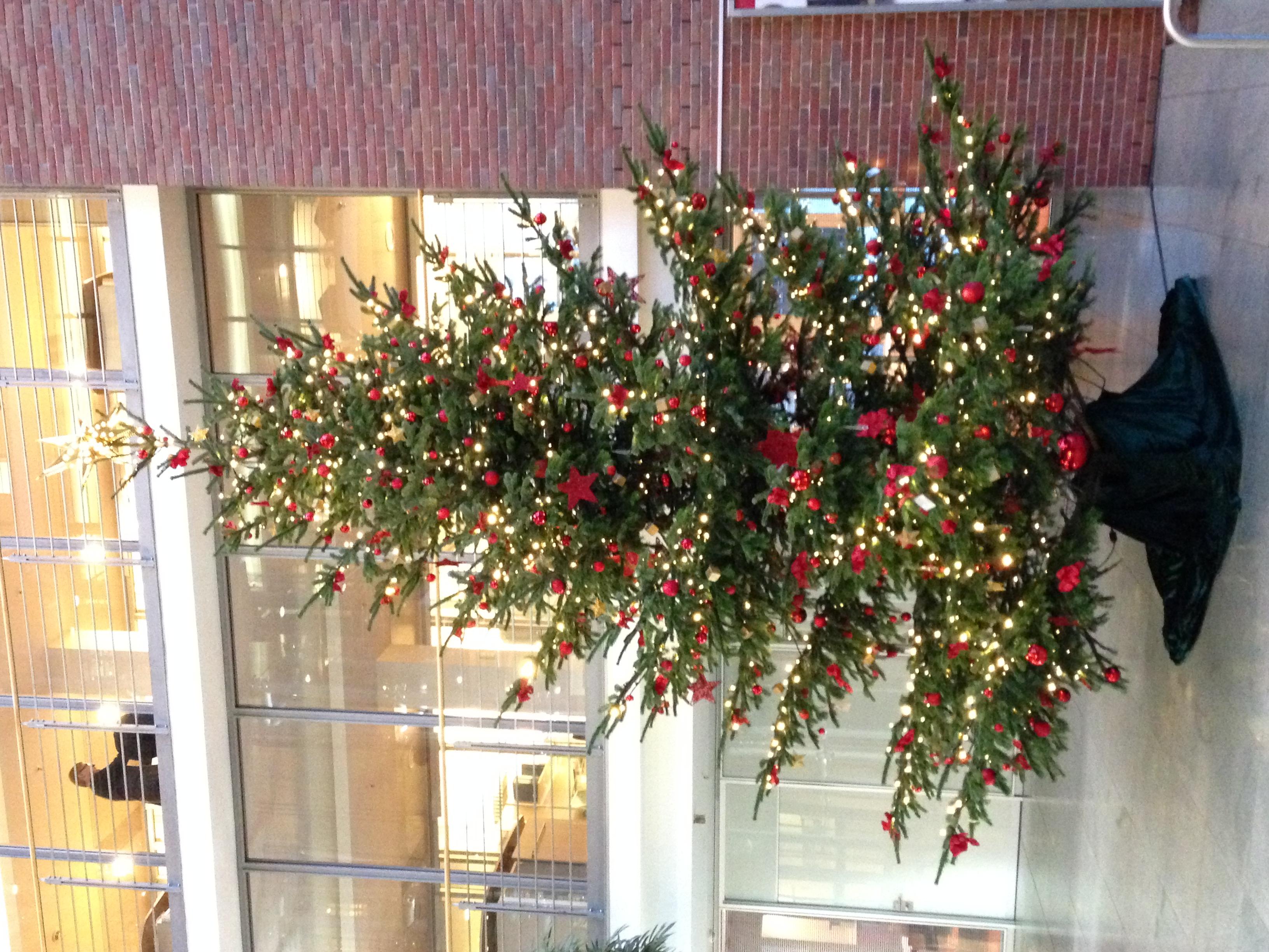 best 28 weihnachtsbaum wasser geben baumschmuck zu weihnachten selber machen aus gl 252. Black Bedroom Furniture Sets. Home Design Ideas