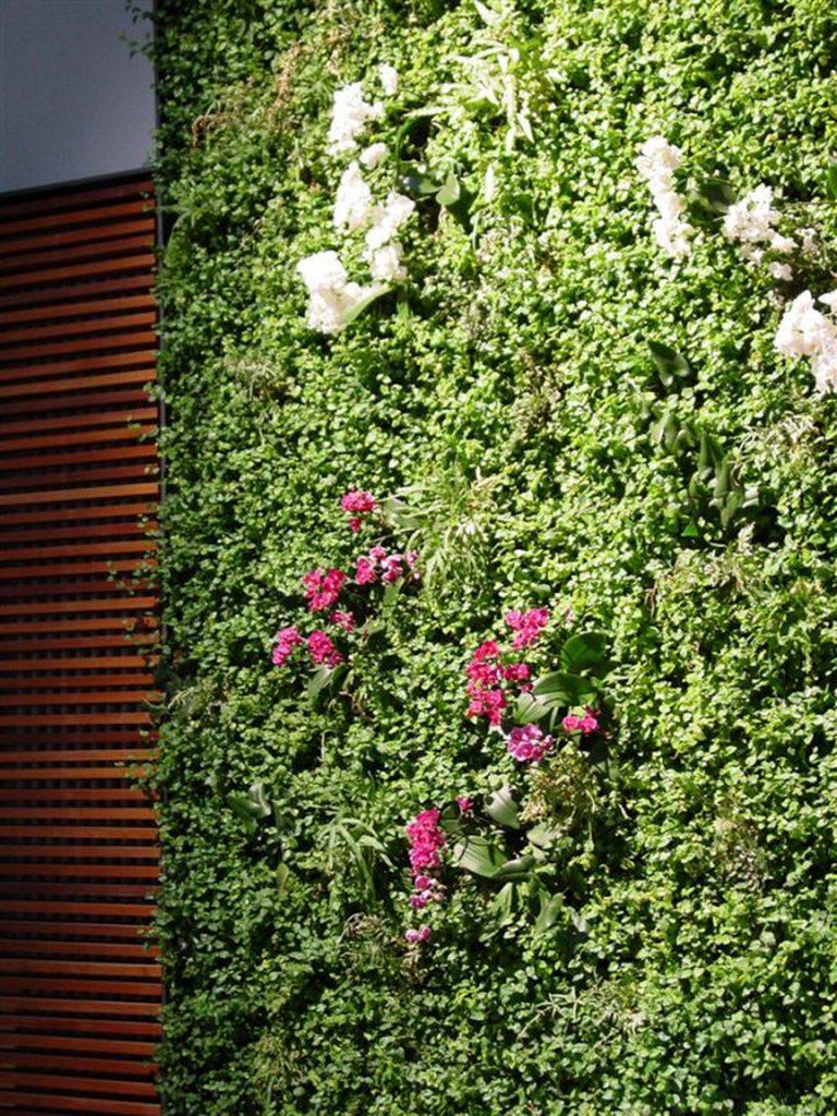 Eine Wand aus lebendigen Pflanzen verbraucht wenig Platz. Wertvolle Quadratmeter können anderweitig verwendet werden.